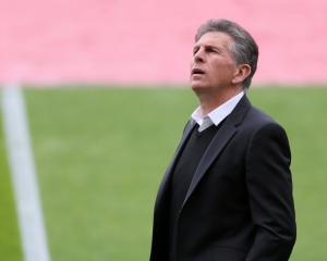 Southampton search for manager with shared